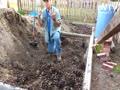 No grass- Sercet bed -green garden