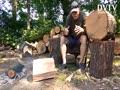Buy Red oak logs for woodlathe,craft, art